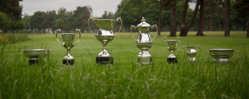 championship trophies by MP
